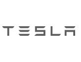 Tesla silver