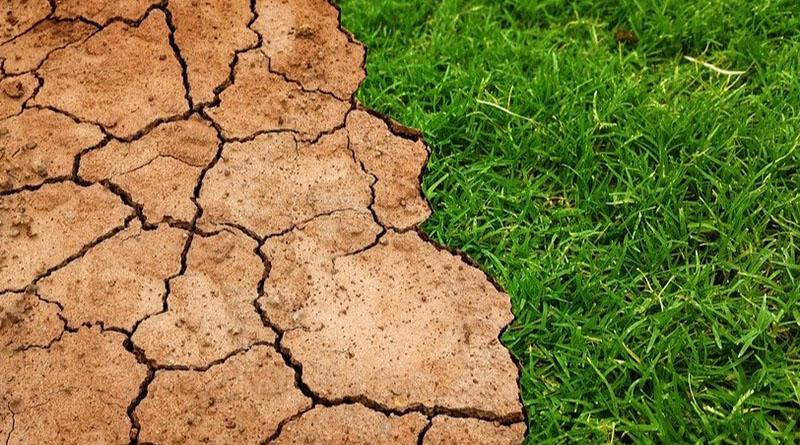 La Ley de Cambio Climático, un paso previo y necesario para cumplir con el Acuerdo de París, señala AEDIVE