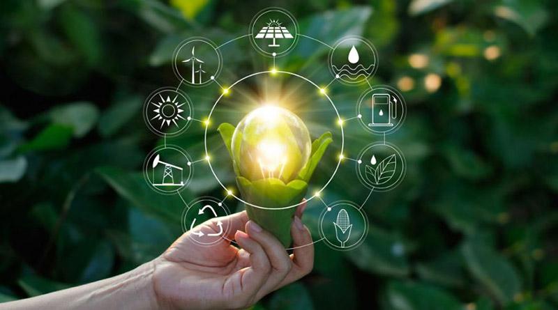 Crecimiento verde: cómo afrontar la pospandemia